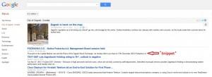 google news snippet